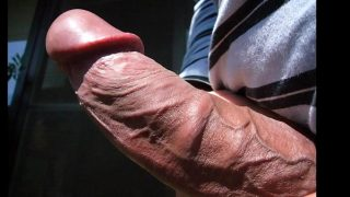 Home Alone Part 3 Erections and Hard Cock